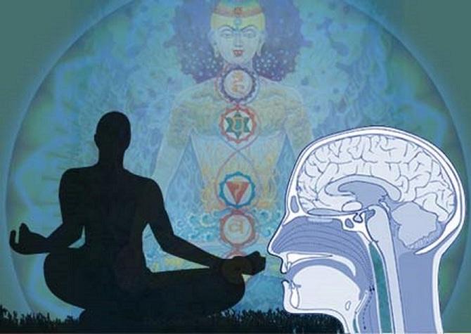tw_brain-meditation01_670